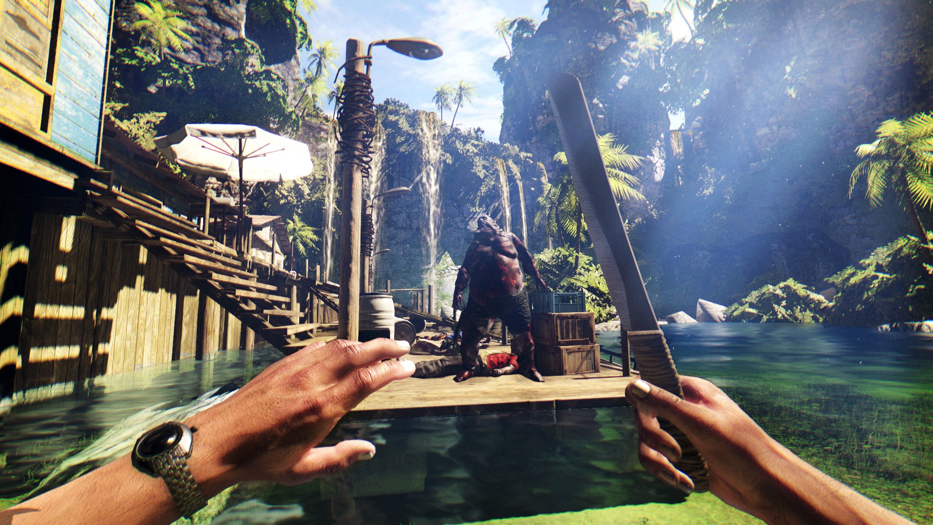 Dead Island  Pc Download